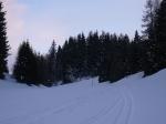 Schneeschuhweekend mit Langlauf 2010 (Lenzerheide)