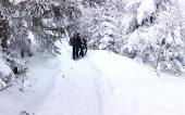 Schneeschuh-Plausch 2013_4