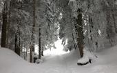 Schneeschuh-Plausch 2013_6
